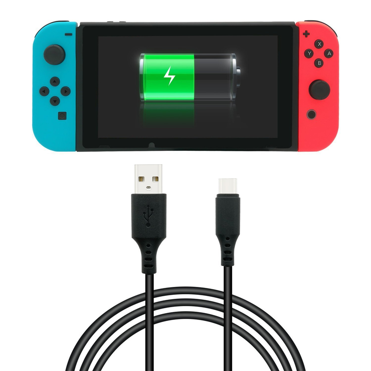 Switch Charging cable